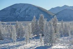 Winter landscape of Oymyakon.  Yakutia, Russia. Winter landscapes of Oymyakon - the pole of cold of the Northern Hemisphere. Yakutia, Russia stock images