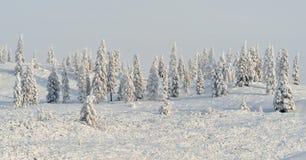 Winter landscape of Oymyakon.  Yakutia, Russia. Winter landscapes of Oymyakon - the pole of cold of the Northern Hemisphere. Yakutia, Russia stock photos