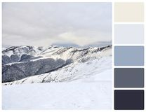 Winter landscape with palette color swatches Royalty Free Stock Photos
