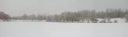 Winter landscape panorama Stock Photos