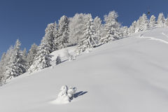 Winter Landscape. Panorama of the Alpes at the Passo San Pellegrino - Val di Fassa in Italy Stock Photography