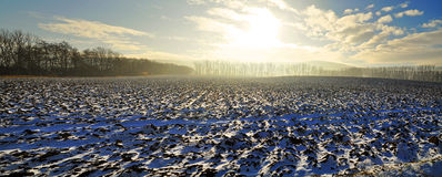 Winter landscape panorama Royalty Free Stock Photo