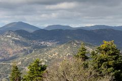 Firs in the mountains on a winter day. Winter landscape. Panoramic view of the mountains in the distance and ice-covered spruce at sunrise in the winter Greece Stock Photography