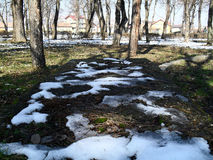 Winter landscape park Royalty Free Stock Photography