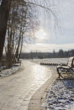 Winter landscape in the park Royalty Free Stock Image