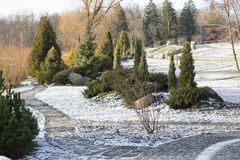 Winter landscape in the park Stock Photography