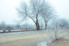 Winter landscape in the park. Winter landscape. Outside the city is covered with snow. Fairy Winter. snowy city. city streets early in the morning Stock Photo