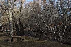 Winter Landscape. A winter park scene along the river Stock Images