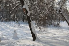Winter landscape with a park Royalty Free Stock Photos