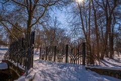Winter landscape  in the park. Winter landscape in the park walking lane Stock Images