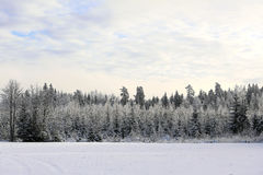 Winter Landscape in Pastel Colors stock photography