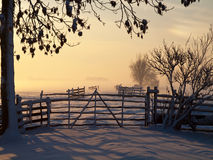 Winter landscape in pasture Stock Photo