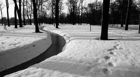 Winter landscape. In the Peterhof Royalty Free Stock Photo