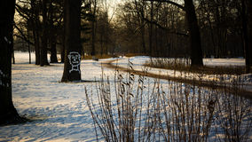 Winter landscape. In the Peterhof royalty free stock image