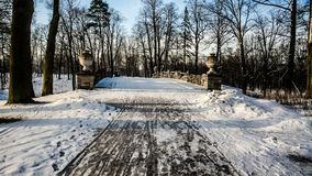 Winter landscape. In the Peterhof Stock Photos