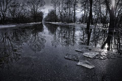 Winter landscape photo after rain. Black and white winter landscape photo after rain Stock Photography