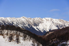 Winter landscape with Piatra Craiului Mountains Stock Photography