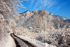 Winter landscape in Pieniny Mountains, Poland Royalty Free Stock Images