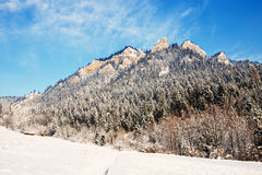 Winter Landscape In Pieniny Mountains Stock Photography