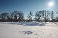 Winter landscape in Poland. Sun on the frozen landscape Royalty Free Stock Photos