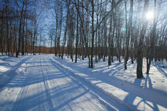Winter landscape in Poland. Sun on the frozen landscape Stock Photo