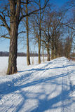 Winter landscape in Poland. Sun on the frozen landscape Royalty Free Stock Photo