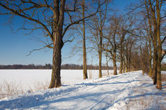 Winter landscape in Poland. Sun on the frozen landscape Royalty Free Stock Image