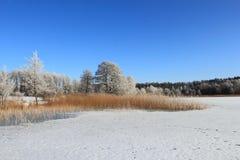 Winter landscape in Poland, Masurien Region Royalty Free Stock Image