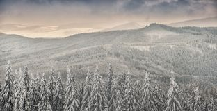 Winter landscape in polish beskidy mountains Royalty Free Stock Photography