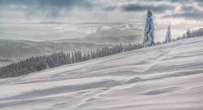 Winter landscape in polish beskidy mountains Royalty Free Stock Image