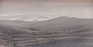 Winter landscape in polish beskidy mountains Stock Photography