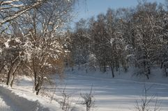 Winter landscape with a pond Royalty Free Stock Image