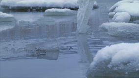 Ice floes on the water. Winter landscape of the pond, ice floating on the water in the cold season stock video footage