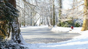 Winter. Landscape with pond and trees stock footage