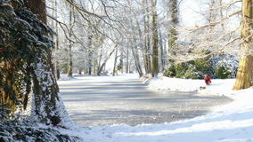 Winter. Landscape with pond and trees stock video footage