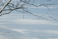 Winter landscape with a pond Royalty Free Stock Photo