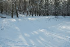 Winter landscape with a pond Stock Photography