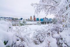 Winter Landscape of Portland Oregon. Snowy Landscape of Portland Oregon USA royalty free stock photo
