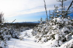 Winter landscape, Quebec Stock Photos