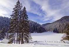 Winter Landscape, Red Lake, Romania Royalty Free Stock Image