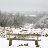 Winter landscape of Richmond Park Royalty Free Stock Image