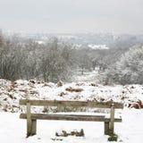 Winter landscape of Richmond Park Royalty Free Stock Image