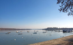 Winter landscape of the river Danube at Zemun, Serbia Stock Images