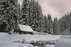 Winter landscape. River on the forest Stock Photos