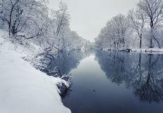 Winter landscape with river in forest Stock Image