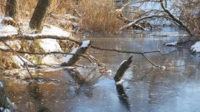 Winter landscape River in forest frozen water nature ice. Winter landscape River forest frozen water nature ice stock footage