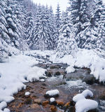 Winter landscape with the river in frosty day Stock Photos