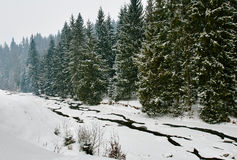 Winter Landscape With river Stock Photo