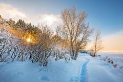 Winter landscape on the river. The river Ob, and the Ob reservoir, Novosibirsk, Siberia, Russia. Siberian winter, the snowy river and a footpath. The river Ob stock photo