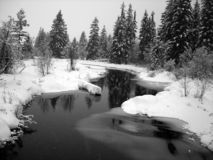 Winter landscape with a river and pine trees. Snow falling, horizontal Stock Images
